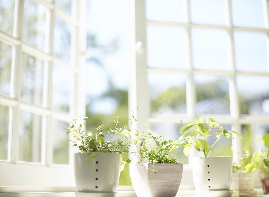 Top Tips for Improving Your Indoor Air Quality