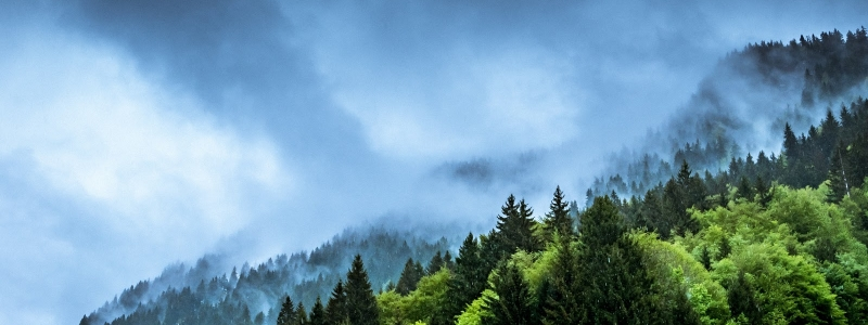 Dry vs Humid Air: How Does it Affect us?